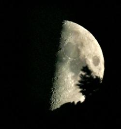 luna_1.jpg