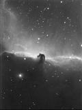 IC_434_Horsehead_Nebula.jpg