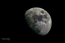 luna1~0.jpg