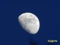 Luna_-_Zoom_2.jpg